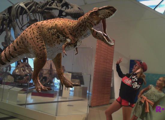 ha un dinosaure