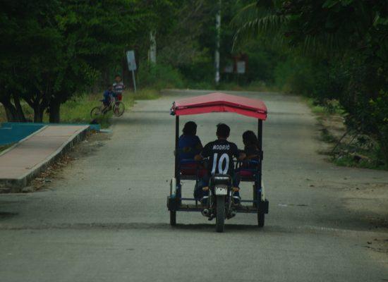 Sur la route pour Campeche