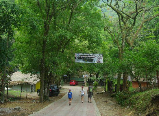 IMGP3429